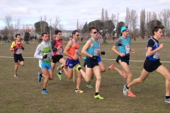 Cross de Valladolid 2014_1 (1)